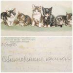"""Вы уже поняли, что мы очень любим кошек. Особенно наш редактор. Еще одна находка в """"Котиссимо"""". А вы в детстве рисовали на обороте карточек? Мы- да!"""