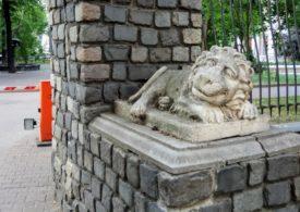 Львы с Орловым